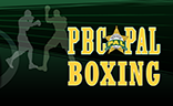 pal-boxing-logo