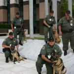 court-services-division__courthouse-k-9-team