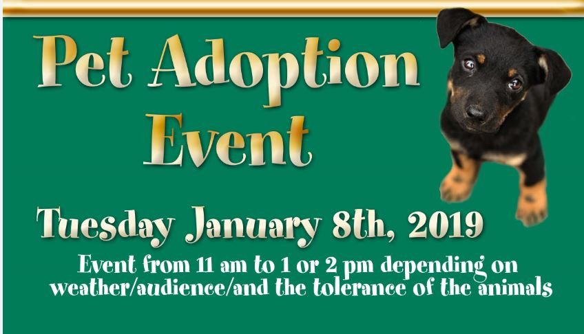 Pet Adoption Event on 1-8-2019