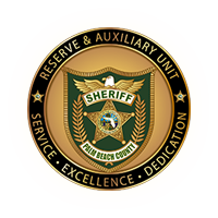 Reserve Auxiliary Deputy Challenge Coin