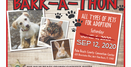 Bark-a-thon 2020 has been Rescheduled